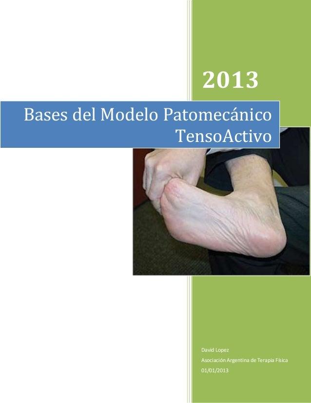 2013 Bases del Modelo Patomecánico TensoActivo  David Lopez Asociación Argentina de Terapia Física 01/01/2013