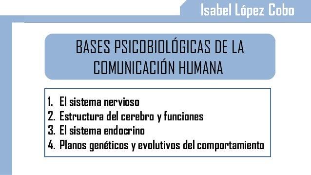 BASES PSICOBIOLÓGICAS DE LA COMUNICACIÓN HUMANA 1. El sistema nervioso 2. Estructura del cerebro y funciones 3. El sistema...