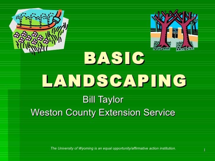 Basic Landscaping