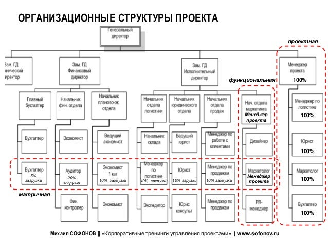 primary project management organizational structures