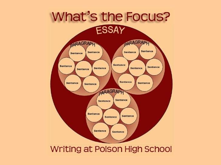 Basic Writing Standards for PHS