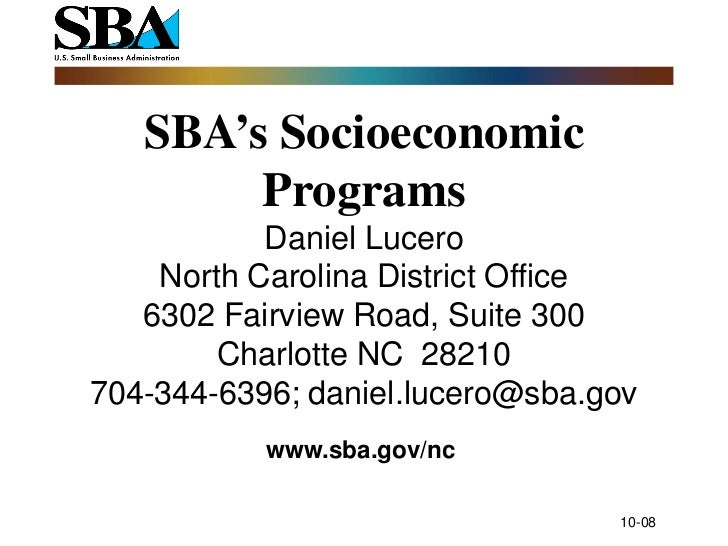 Small Business Programs in Federal Procurement
