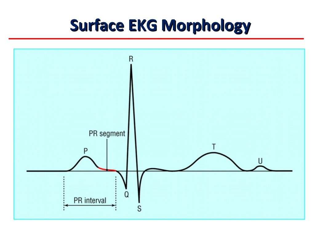 Introduction to Electrophysiology - Pennsylvania