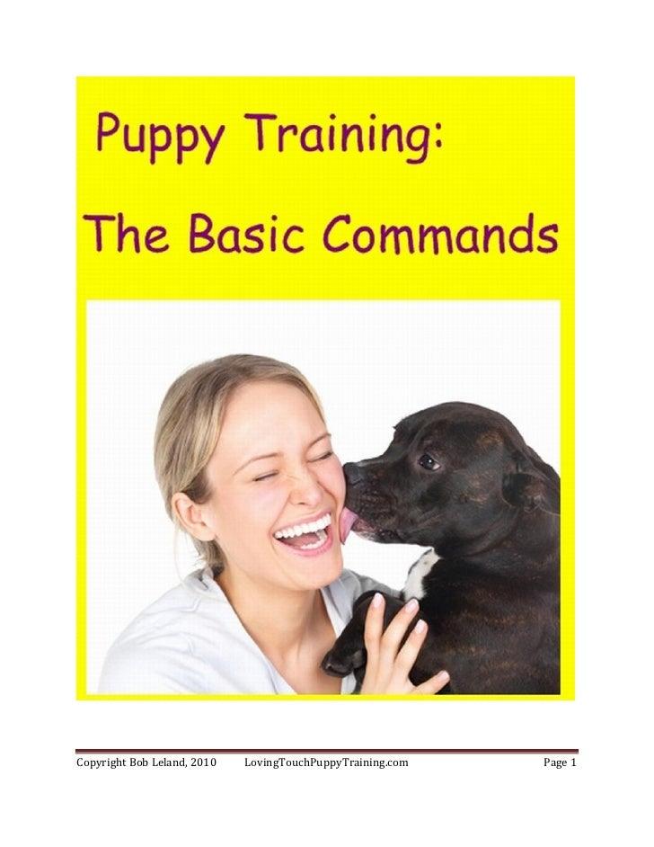 Basic commands ebook