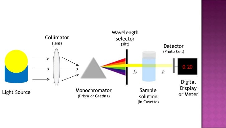 A how to spectrophotometer use