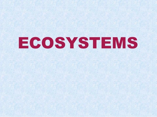 Basicecosystems