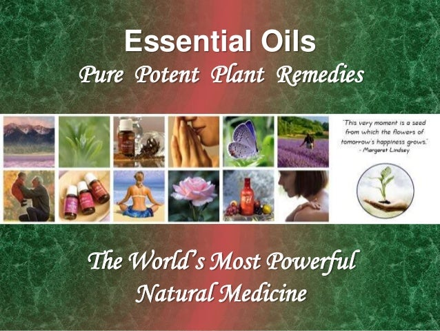Essential OilsPure Potent Plant RemediesThe World's Most PowerfulNatural Medicine