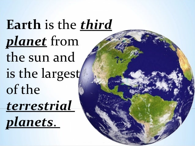 Terrestrial  Definition of Terrestrial by MerriamWebster