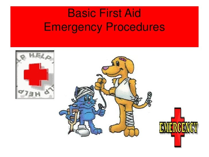 Basic First Aid Emergency Procedures<br />