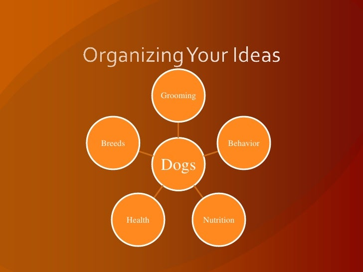 organizing within my organization essay To be truly organized, you need to organize your space and organize your time, making sure you keep track of all your appointments and commitments you can also work in an organized way so you are more efficient and get more things done in a shorter period of time.