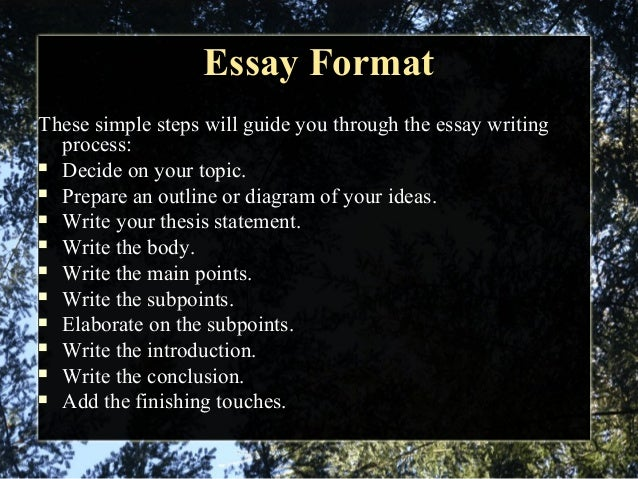 Basics of writing an essay