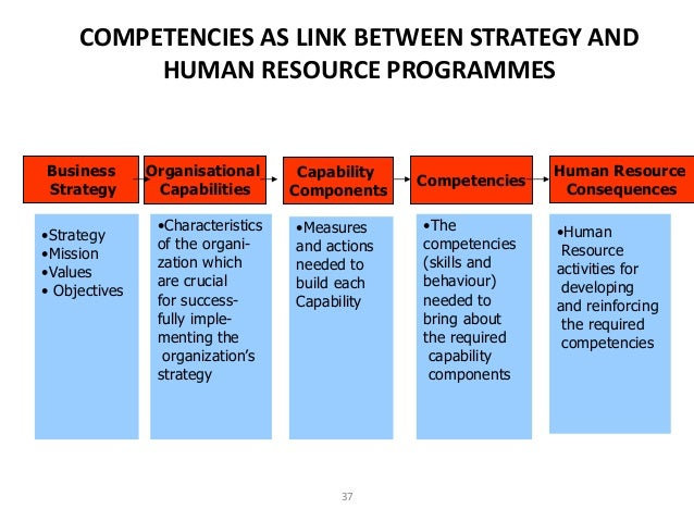 human resource management competencies Establishing a competency-based management competencies can be used to track performance in all human resource committee on competency-based management.