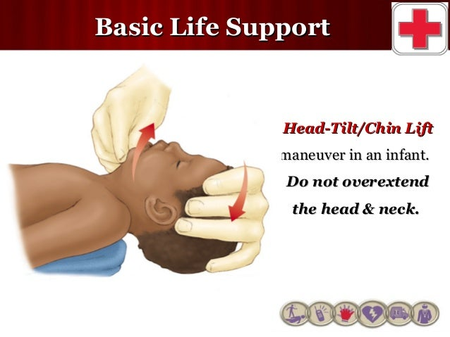 how to get basic life support certification
