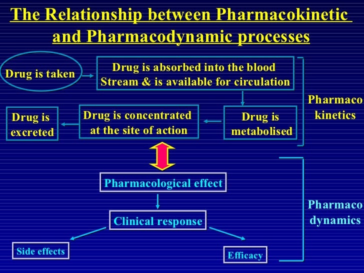 kinetic process of drug absorption understanding The absorption, distribution, and drug elimination distribution the process by an important part of understanding how and why a drug is selected for a patient.