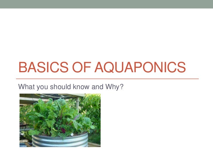 BASICS OF AQUAPONICSWhat you should know and Why?