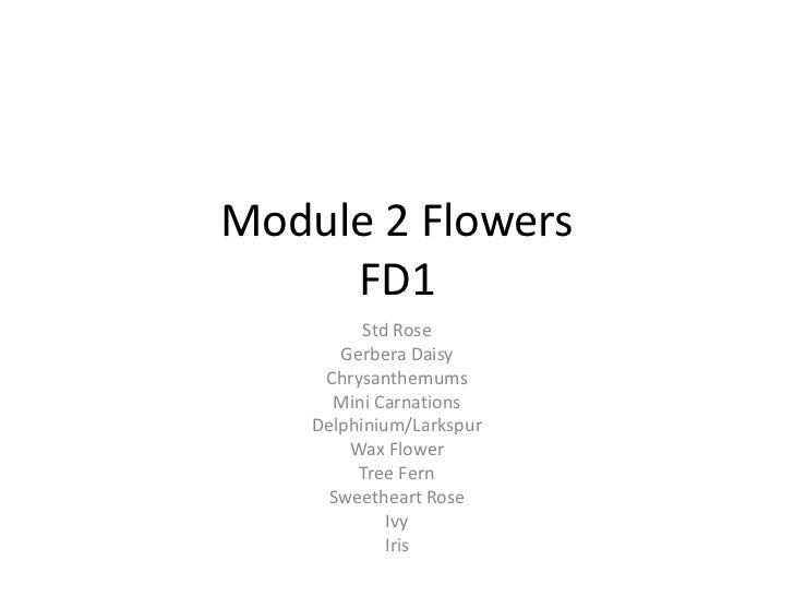 Basics of FD1 flowers