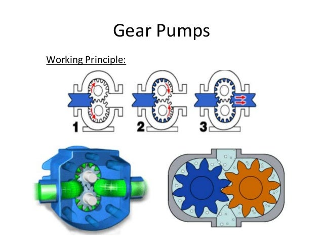 Gear Pump Ppt 18 Gear Pumps Working
