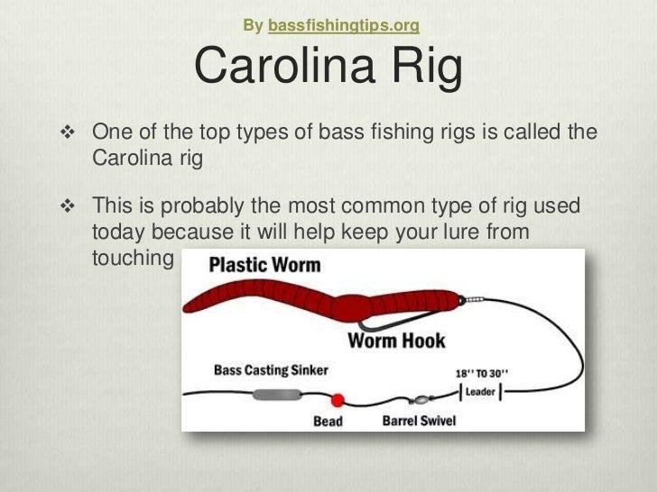 Carolina rig diagram mojo diagram elsavadorla for Carolina rig fishing