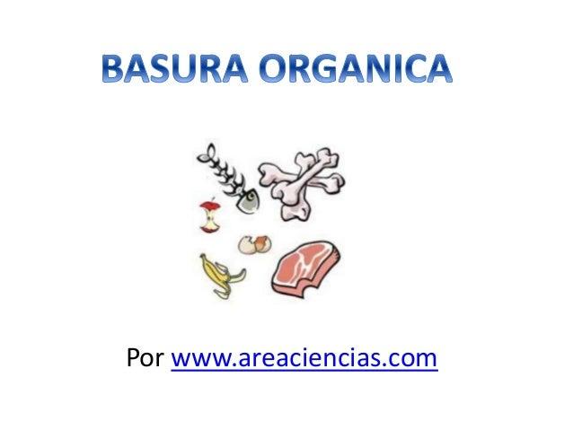 Por www.areaciencias.com
