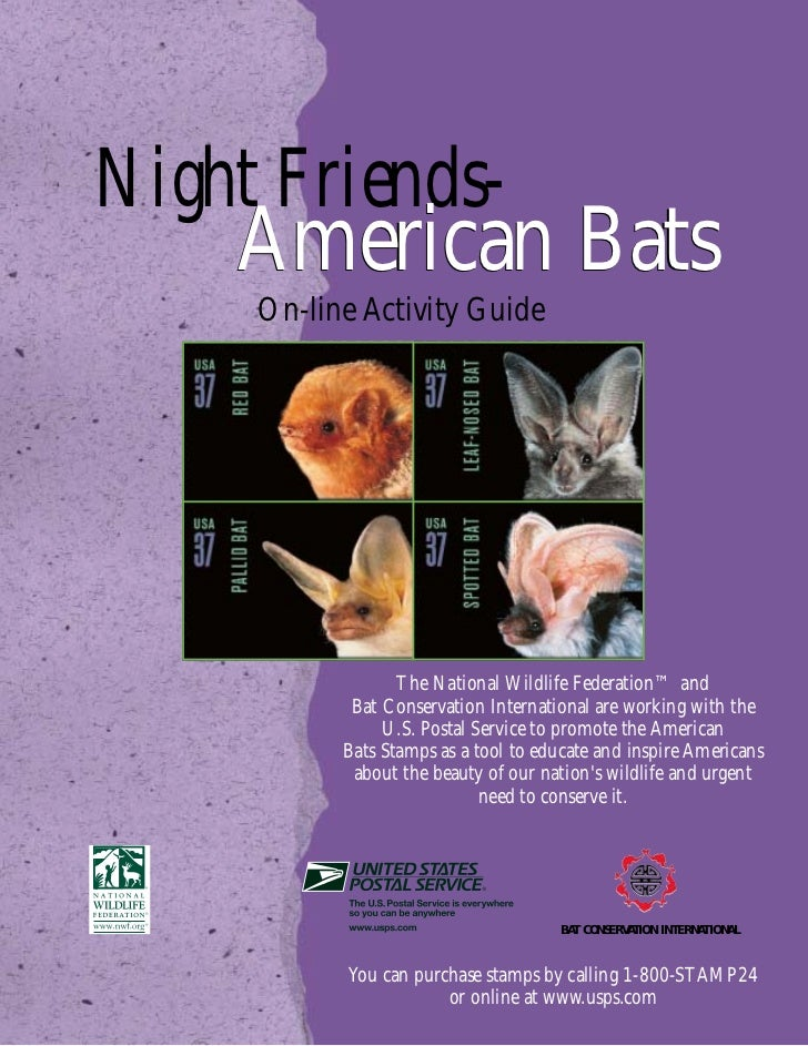 Night Friends-    American Bats     On-line Activity Guide                  The National Wildlife Federation™ and         ...