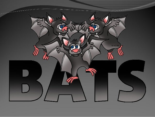 Bats  Bats are mammals that can fly!