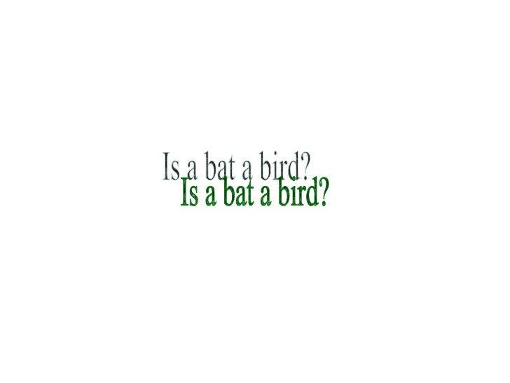 Is a bat a bird?