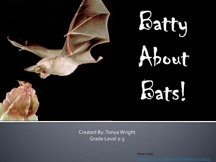 Batty About Bats!<br />Created By: Tonya Wright<br />Grade Level 2-3<br />Photo Credit:<br />http://www.ctrl-c.liu.se/ftp/...