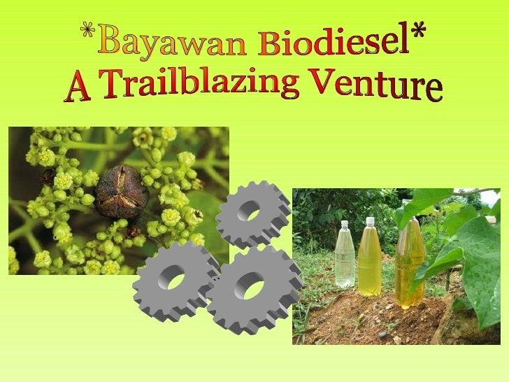 Bayawan City Biodiesel Project