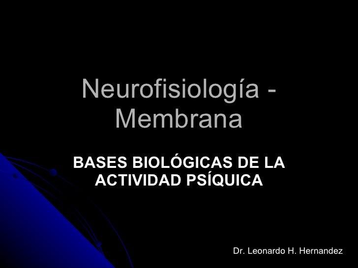 Neurofisiología - Membrana BASES BIOLÓGICAS DE LA ACTIVIDAD PSÍQUICA Dr. Leonardo H. Hernandez