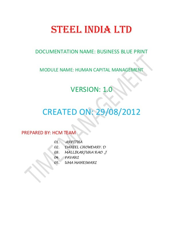 Steel India Limited Business Blue print