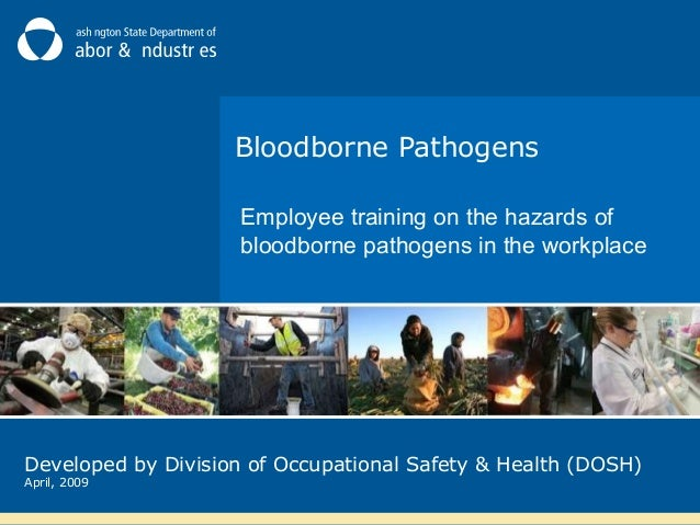 Bloodborne Pathogens Employee training on the hazards of bloodborne pathogens in the workplace  Developed by Division of O...