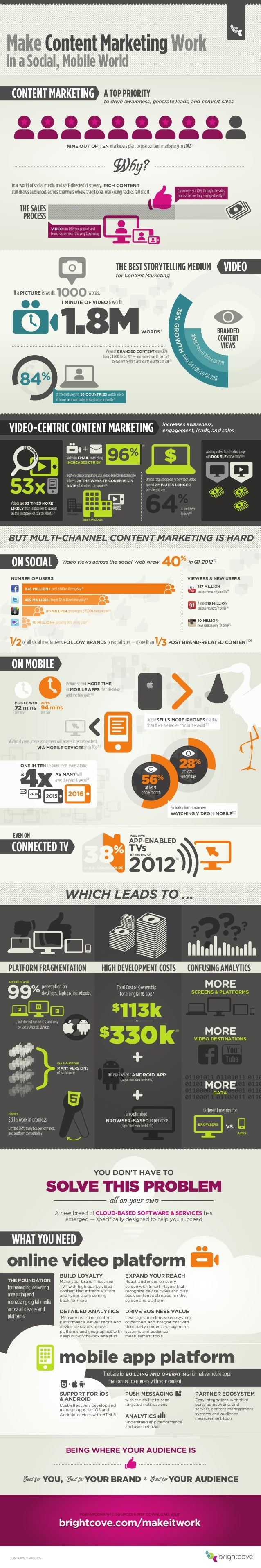 Brigtcove Marketer Infographic 2012