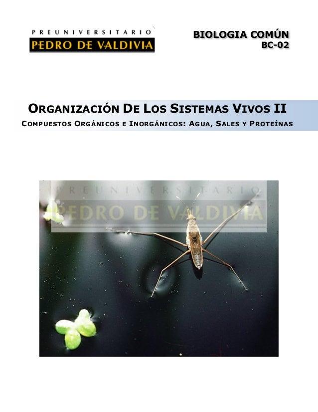 Organización de los sistemas vivos II: Compuestos Orgánicos e Inorgánicos (BC02 - PDV 2013)