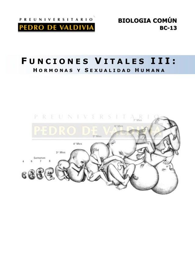 BIOLOGIA COMÚN BC-13  FUNCIONES VITALES III: HORMONAS Y SEXUALIDAD HUMANA