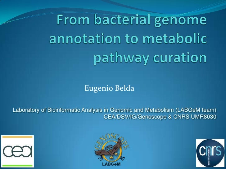 Eugenio BeldaLaboratory of Bioinformatic Analysis in Genomic and Metabolism (LABGeM team)                                 ...