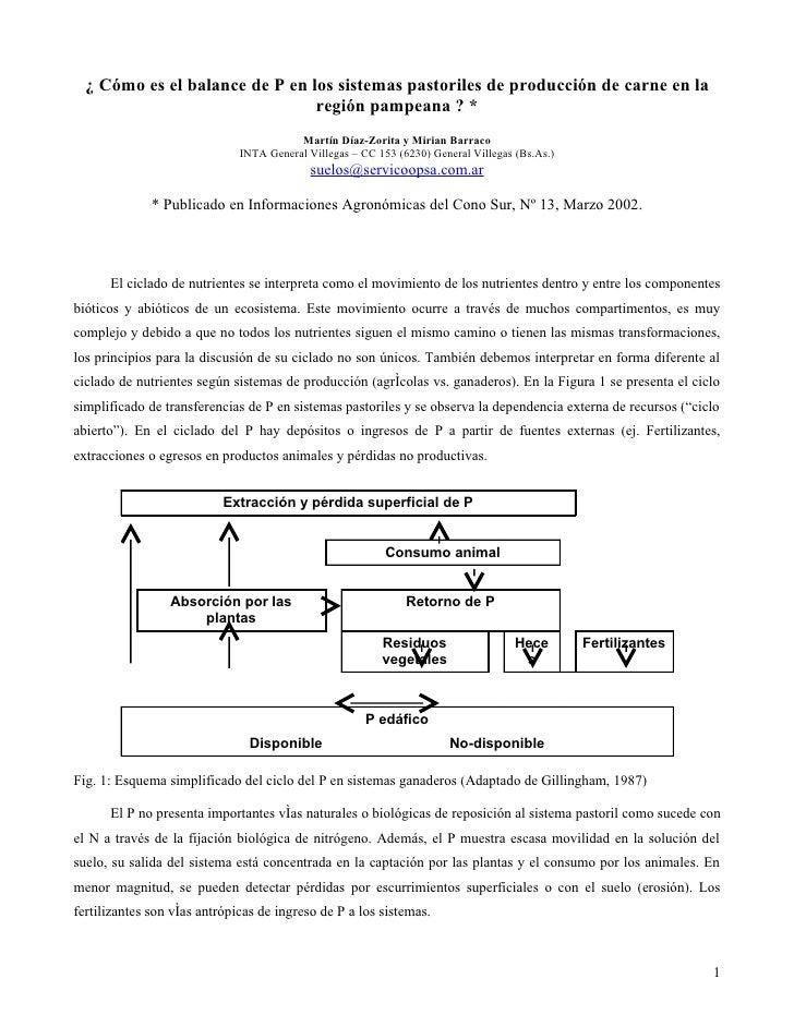 ¿ Cómo es el balance de P en los sistemas pastoriles de producción de carne en la                                 región p...