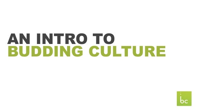 AN INTRO TO BUDDING CULTURE