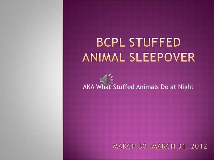 Stuffed Animal Sleepover @ BCPL