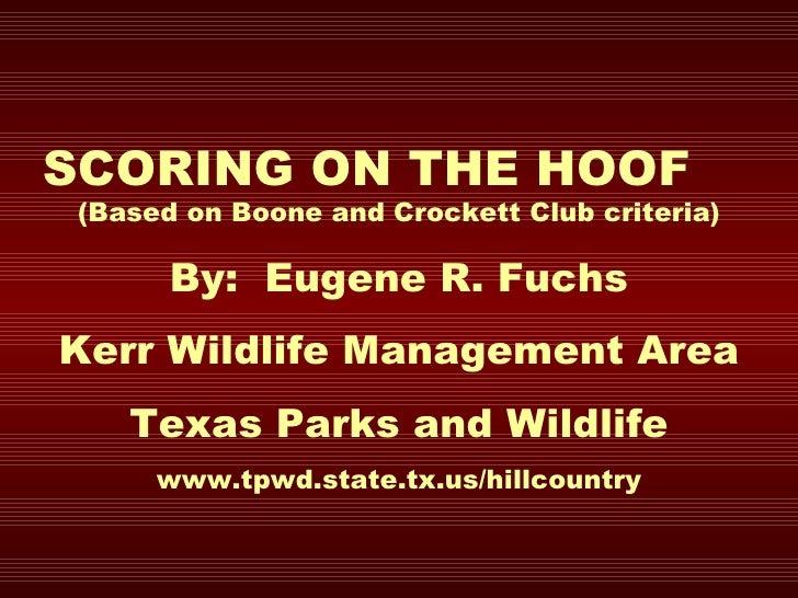SCORING ON THE HOOF  (Based on Boone and Crockett Club criteria) By:  Eugene R. Fuchs Kerr Wildlife Management Area Texas ...