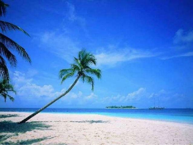 Beach Activities in Kerala