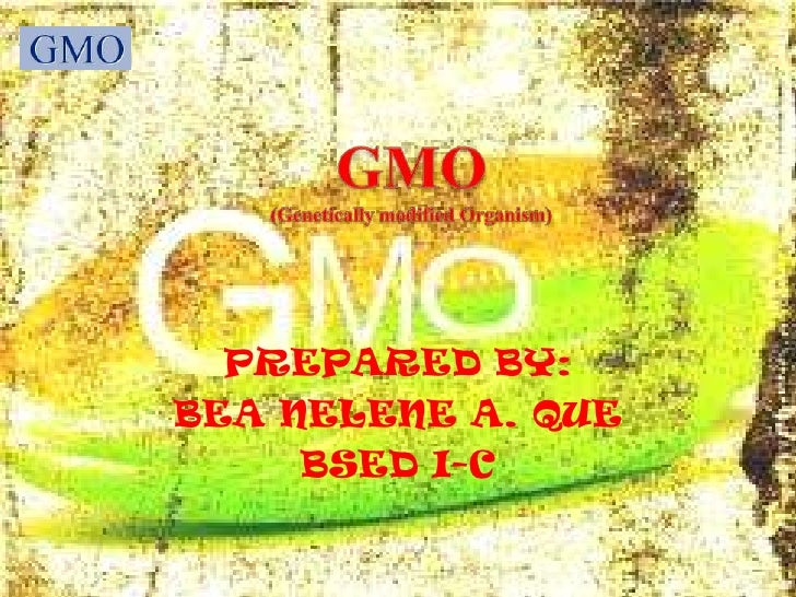 GMO<br />(Genetically modified Organism)<br />PREPARED BY: <br />BEA NELENE A. QUE<br />BSED I-C<br />