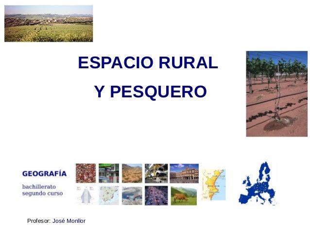 ESPACIO RURAL Y PESQUERO Profesor: José Monllor