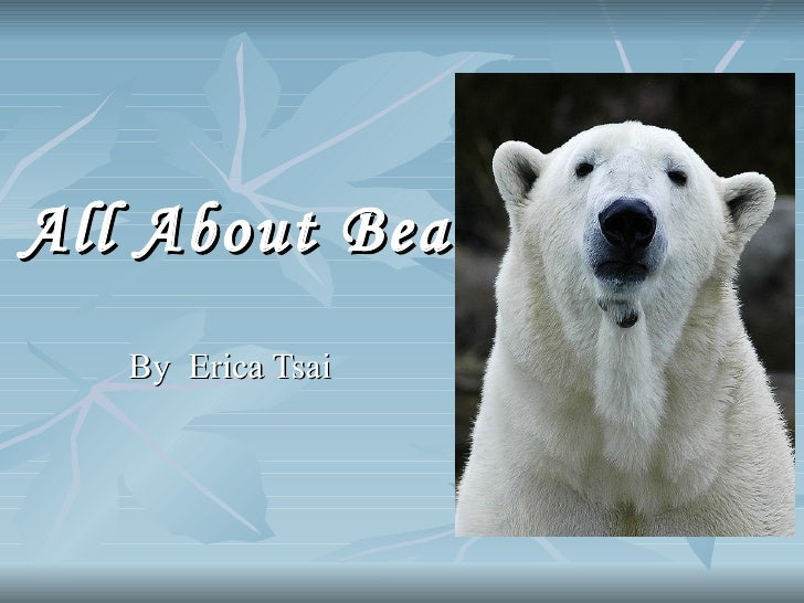 All About Bears   By  Erica Tsai