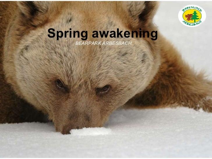 Spring awakening BEARPARK ARBESBACH