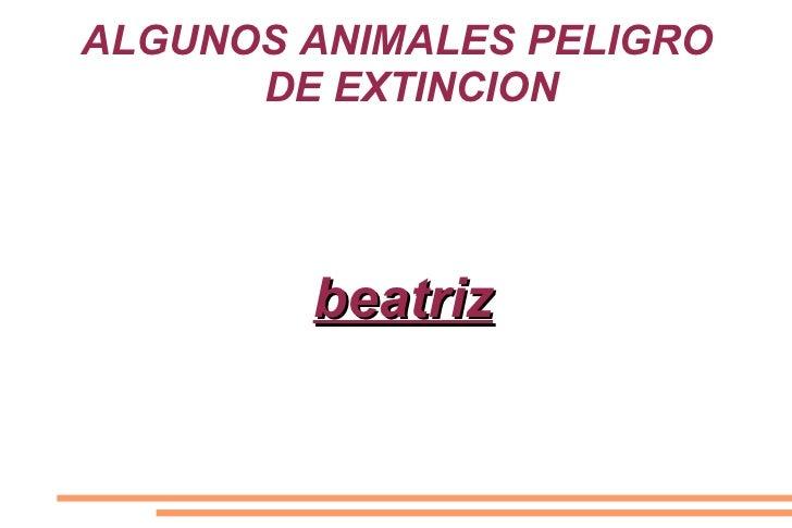 ALGUNOS ANIMALES PELIGRO      DE EXTINCION        beatriz