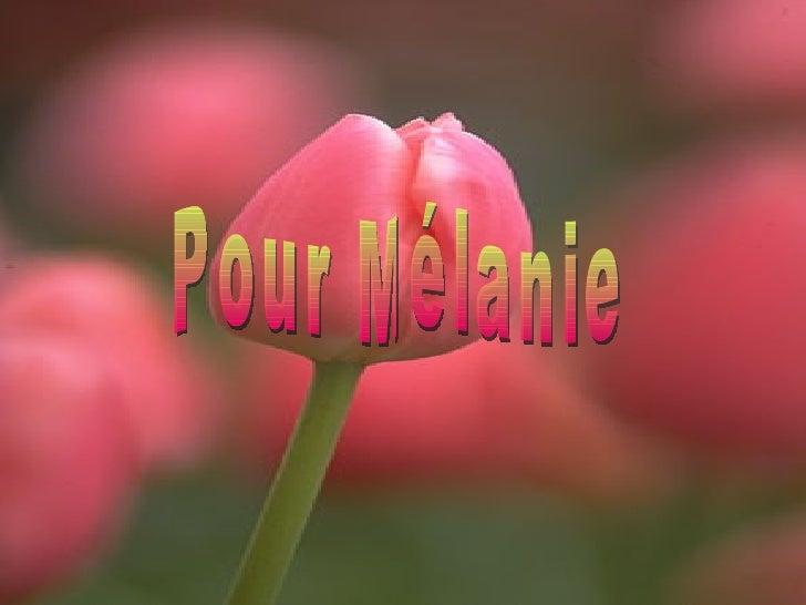 Pour Mélanie