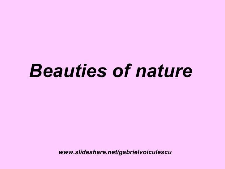 Beauties Of Nature