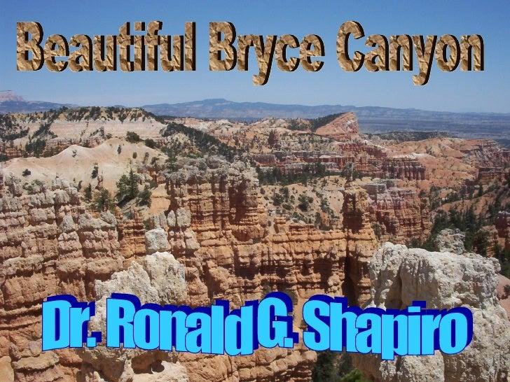 Dr. Ronald G. Shapiro  November 30, 2008 Beautiful Bryce Canyon Dr. Ronald G. Shapiro