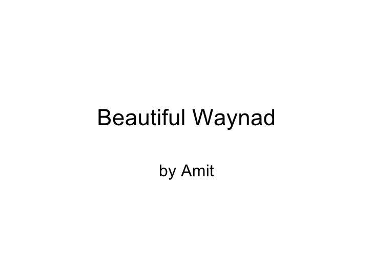 Beautiful Waynad by Amit