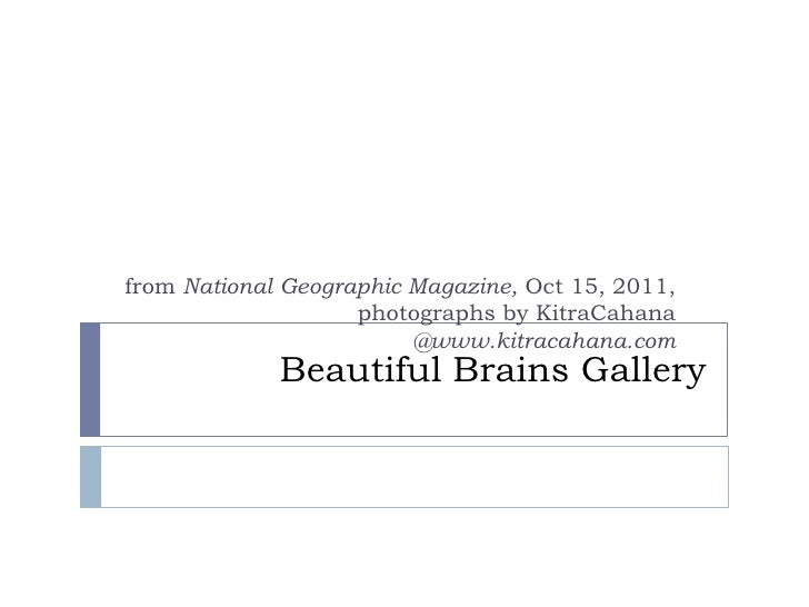 Beautiful Brains Gallery<br />from National Geographic Magazine, Oct 15, 2011, photographs by KitraCahana  @www.kitracahan...